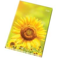 Kniha záznamní A4 100 listů 54105 čtverečkovaná
