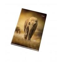 Kniha záznamní A5 100 listů 55105 čtverečkovaná